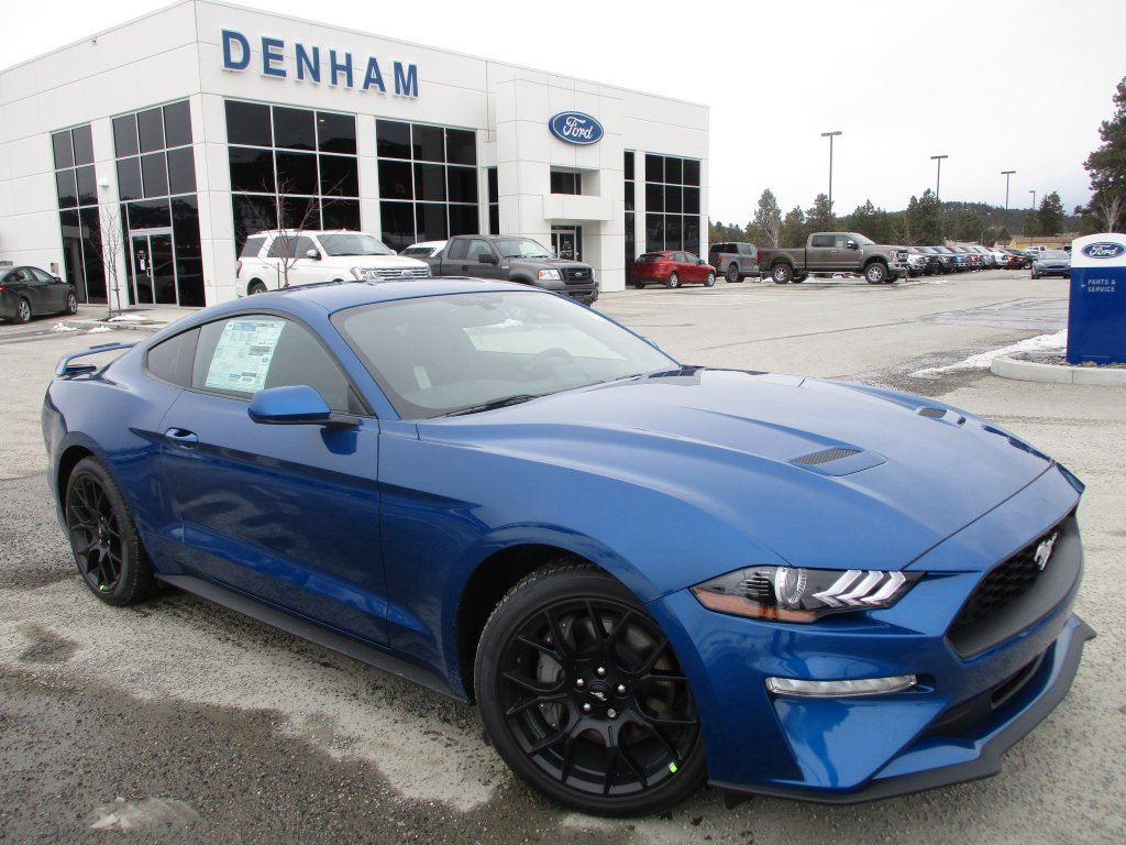 Ford Mustang Ecoboost Used Price