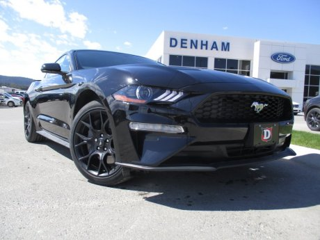 2018 Ford Mustang Ecoboost Fastback w/ Performance Package!