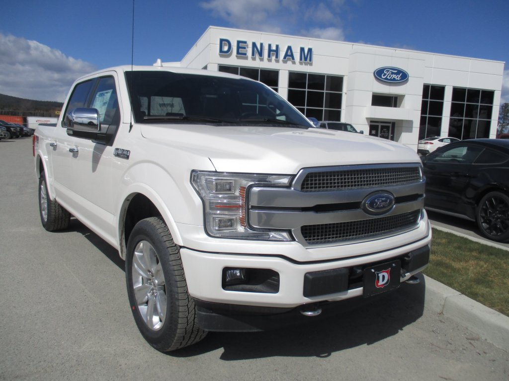 2019 Ford F-150 Platinum 4X4 (DT9306) Main Image