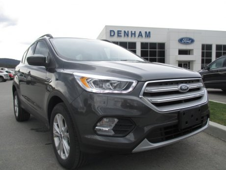 2019 Ford Escape SEL 4WD w/ 1.5L Ecoboost Engine