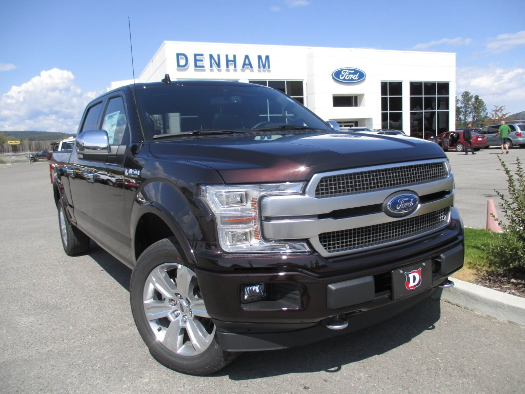 2019 Ford F-150 Platinum 4X4 (DT9601) Main Image