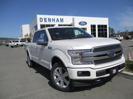 2019 Ford F-150 Platinum 4X4