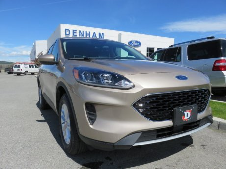 2020 Ford Escape SE AWD w/ Copilot 360 Package!