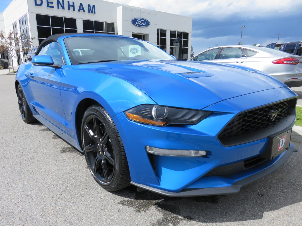 2019 Ford Mustang Ecoboost Premium Convertible  w/ Black Accent Package (P2619) Main Image