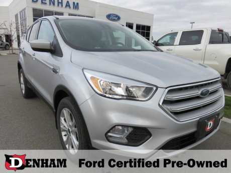 2019 Ford Escape SE AWD w/ Ford Safe & Smart Package